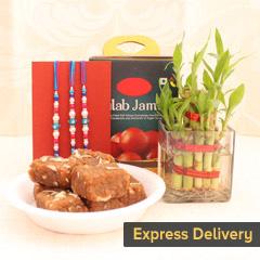 Plant and sweets Rakhi combo